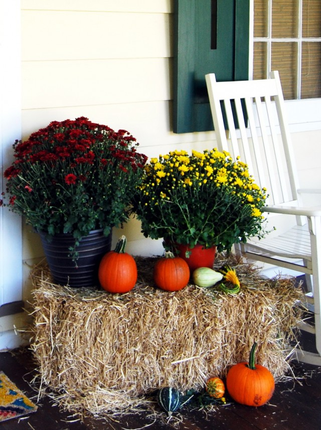 Porch Decorating Ideas Photos