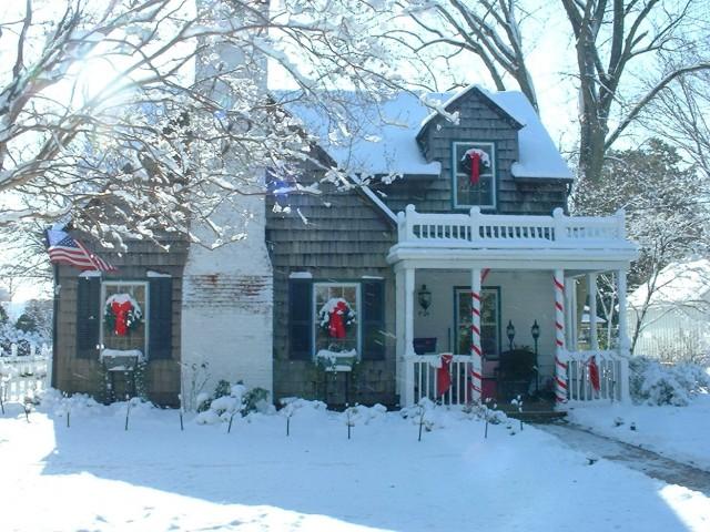Christmas Porch Pot Ideas