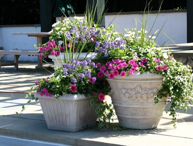 Front Porch Planter Ideas Pinterest