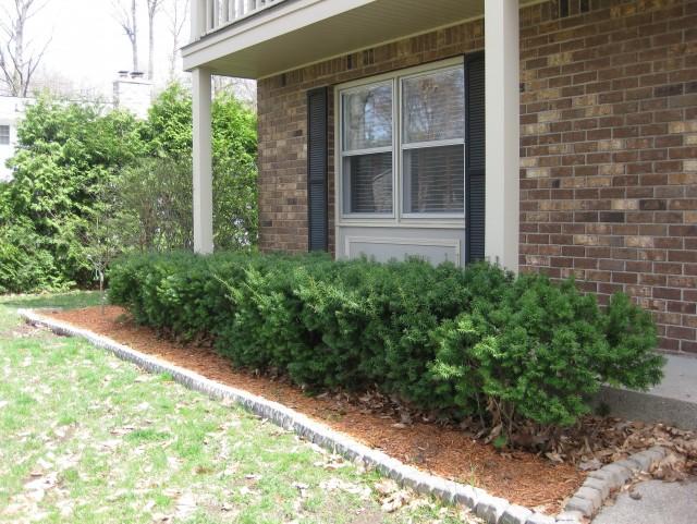 Front Porch Landscape Photos