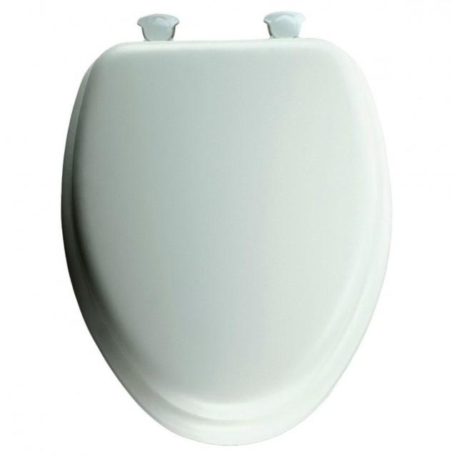 Porcher Toilet Seat Removal