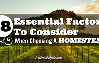 You want to buy a homestead, but you need to know what to look for to make sure your purchase is solid. Find out the essentials in a homestead here.