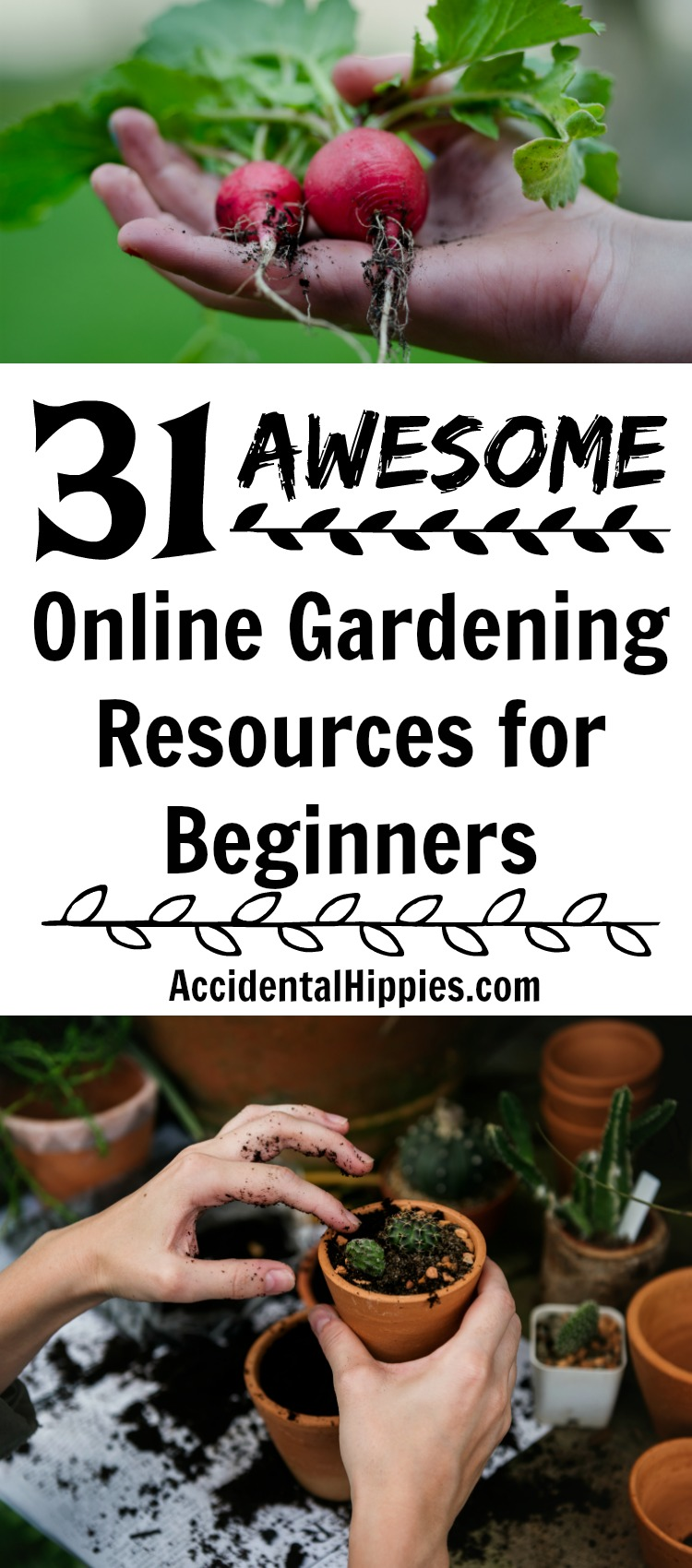 Some of the best gardening posts for beginning gardeners, aspiring homesteaders, and brown thumbs like me