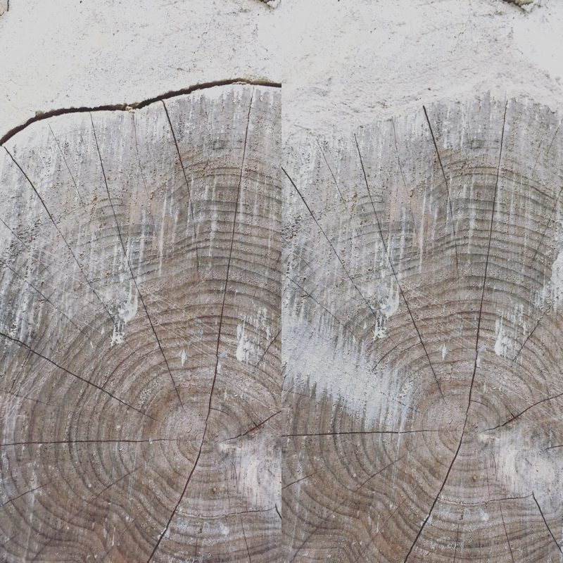 Log in a cordwood wall before and after having gaps sealed with Log Jam chinking compound. One of many ways to maintain a cordwood home #cordwood #loghome
