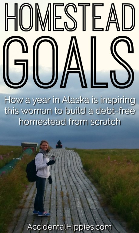 There are many ways to find homestead inspiration. For one of our readers, she found inspiration in her year living and teaching in the Alaskan bush. Here's how one of our readers got inspired to get debt free and make a REAL plan for building a self-sustaining home. #homesteading #selfsufficiency #homeplanning