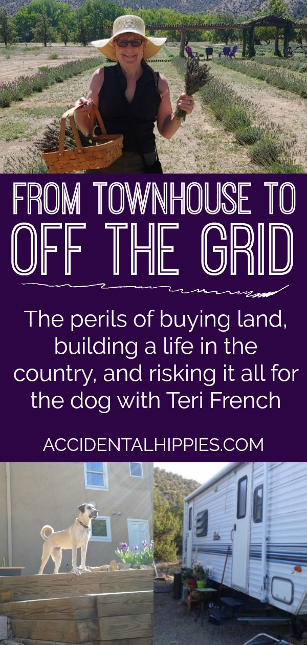 From living in a townhouse to living off-grid in a travel trailer on her own land. What she has to tell you about the pitfalls of buying land and building an ecofriendly net-zero house will astound you!