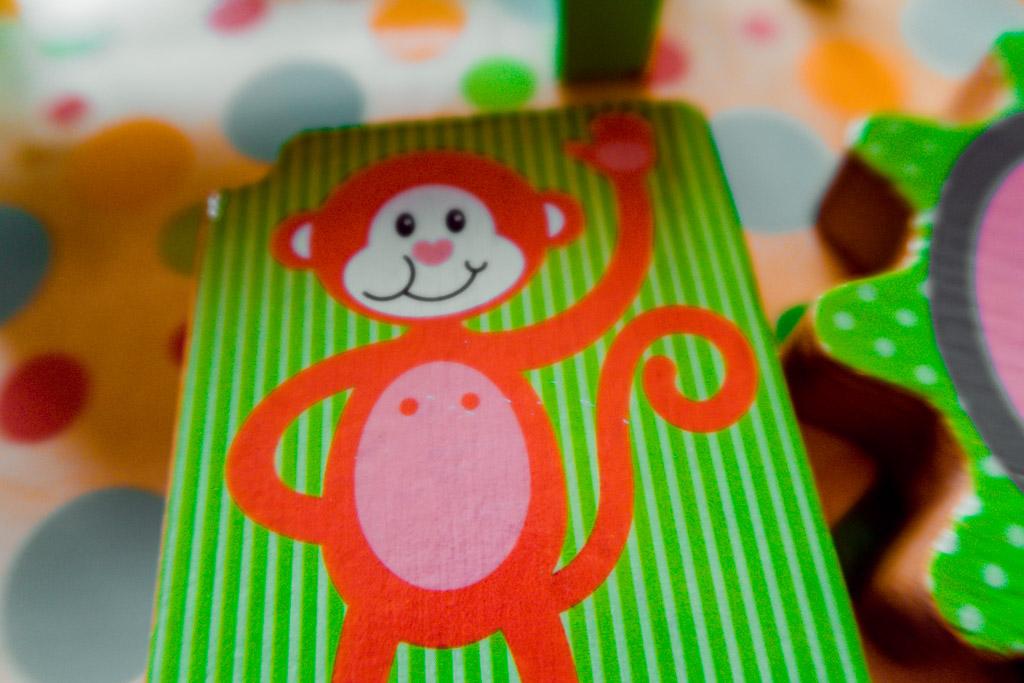 front of monkey near mirror