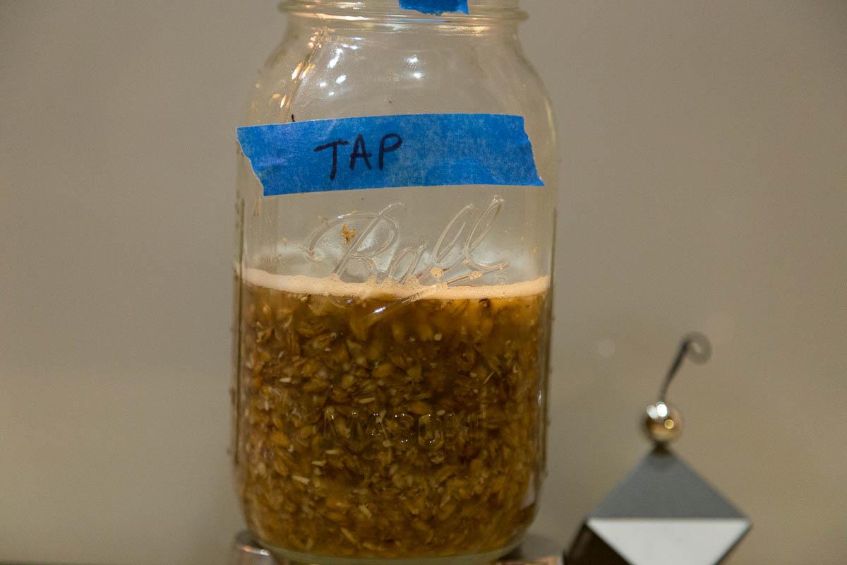 Tap water test mash result