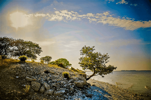 Sweden-Faro-Credit-simon-paulin