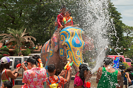 image-of-elephant-during-water-festival-in-thailand