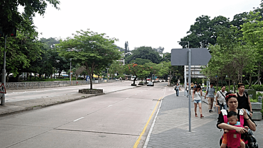 hong-kong-island-road-bus-stop-credit-www.accidentaltravelwriter.net