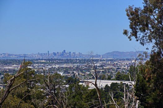 Usa-oakland-zoo-bay-view-credit-allie-caulfield