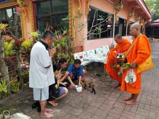 image-of-buddhist-devotees-offering-alms-in-phuket-thailand