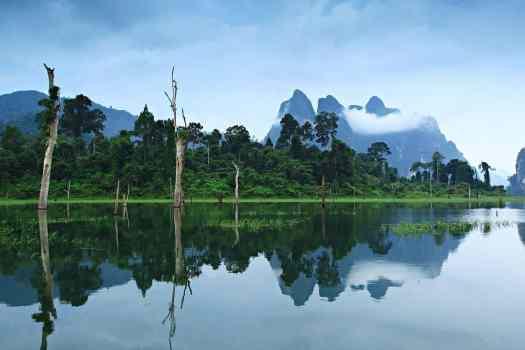 iimage-of-khao-sok-national-park-surat-thani-thailand