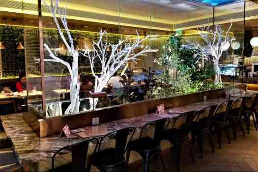 image-of-hk-shatin-restaurant-beans-the-greenhouse- interior
