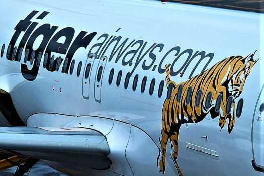 image-of-tiger-airway-logo-on-side-of-airplane