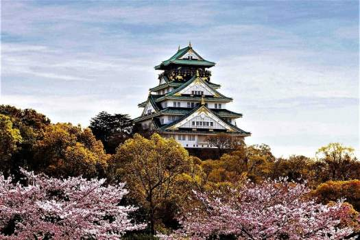 cherry-trees-blooming-outside-osaka-caslte