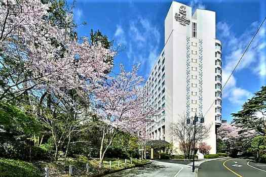 cherry-blossoms-at-prince-hotel-in-tokyo-japan