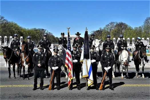 military-marching-in-national-cherry-blossom-parade