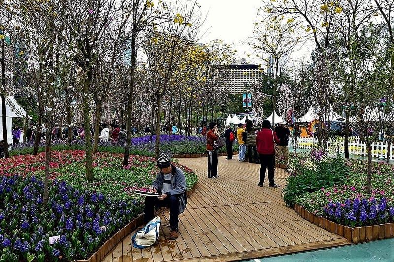 hong-kong-fflower-show-victoria-park