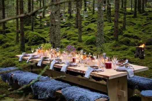 picnic-in-sweden