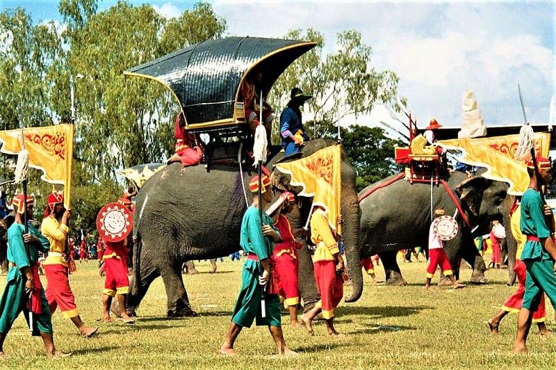 surin-elephant-round-up