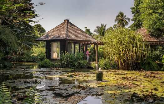 th-phuket-Anantara-Mai-Khao-Villas-lily-pond