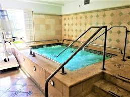 fairmont spa (1)