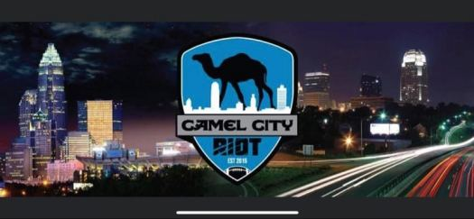 nfl-carolina-panthers-camel-city-riot-logo