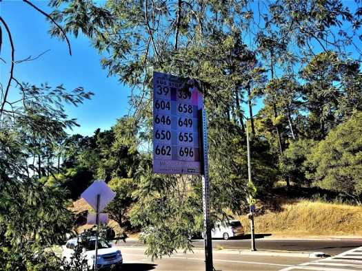oakland-hills-bus-stop