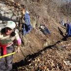 Acción Sierra Nevada colabora en la recuperación de la acequia de Barjas