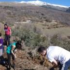 La recuperación de la acequia de Barjas en Cáñar (Granada)