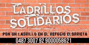 ladrillos-solidarios-800x600
