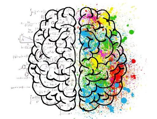 Apprendre facilement grâce à la carte mentale.