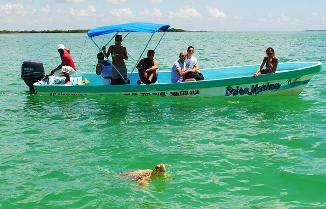 Explore the Sian Ka'an Biosphere - Things to do in Tulum MX