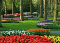 Things-to-Know-acWhen-You-Plan-to-Visit-Holland