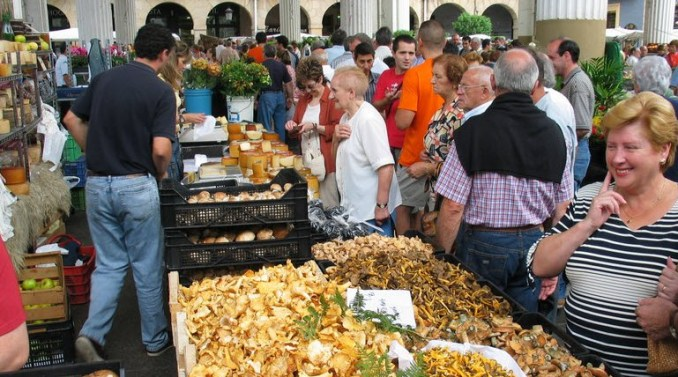 Culinary Tours in the Basque Country