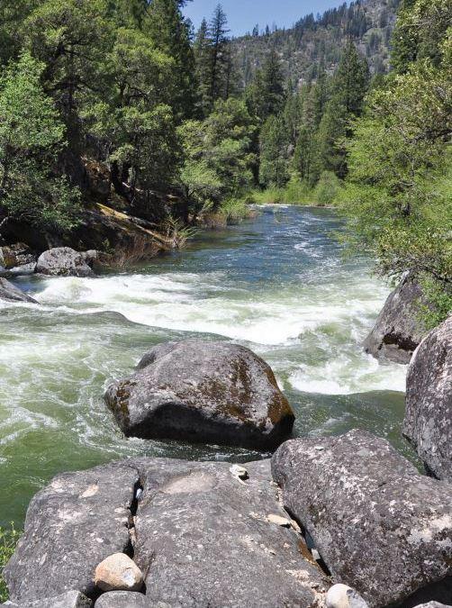 MOKELUMNE WATERSHED AVOIDED COST ANALYSIS: Why Sierra Fuel Treatments Make Economic Sense