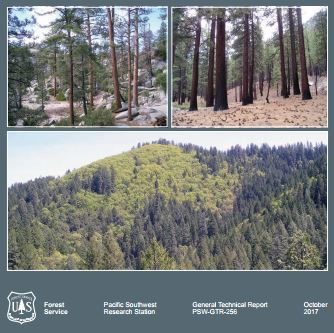 New Report: Natural Range of Variation for Yellow Pine and Mixed Conifer Forests in the Sierra Nevada