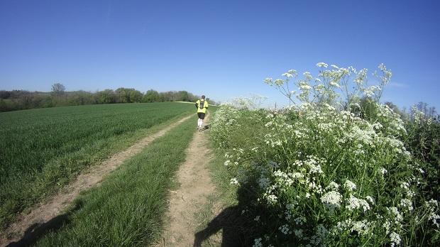 Trail de Ruy, les foulées Ruymontoises