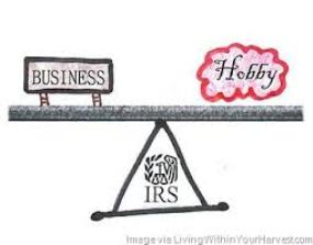business vs hobby.jpg
