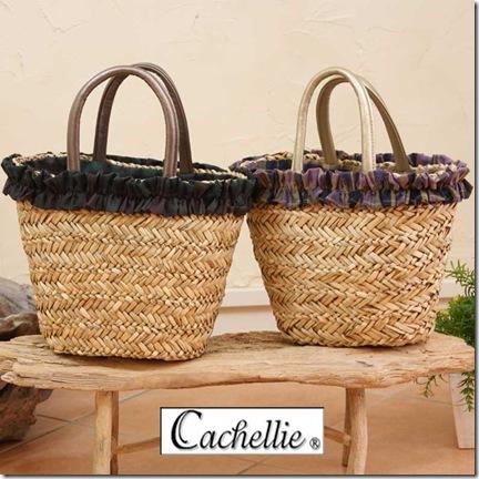 cachellie5151601