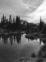 Dan Newman - Crest Mountain