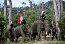 FOTO: SUPARTA/ACEHKITA.COM