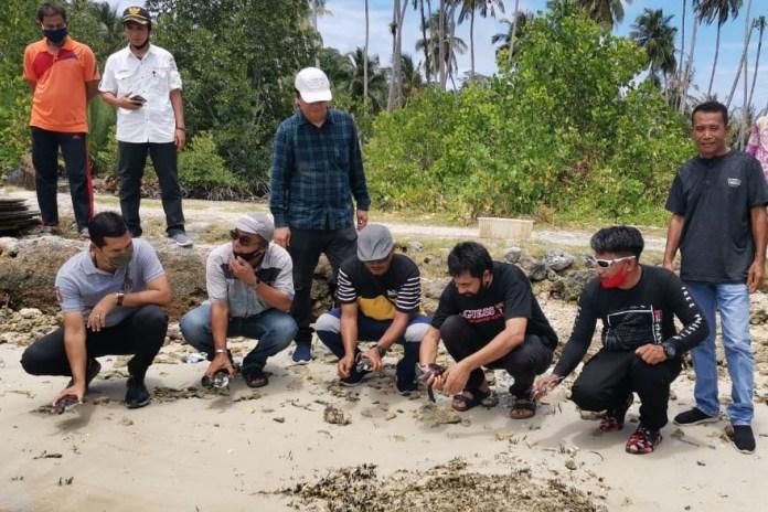 Muzakir Manaf Lepas Tukik di Pulau Banyak Penangkaran Penyu Harus Terus Dilakukan