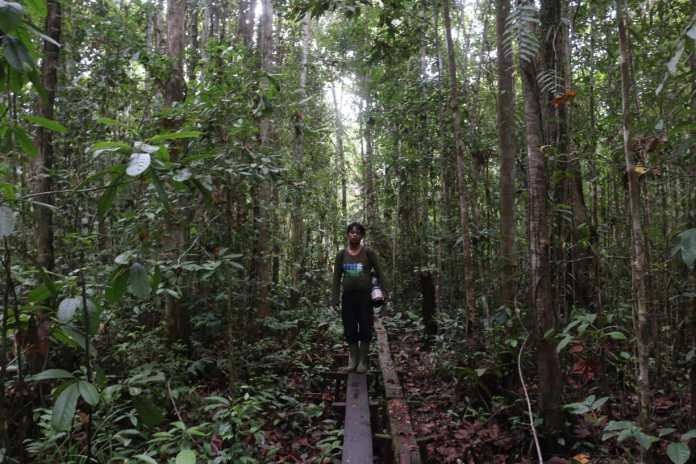 Cerita Warga Melindungi Satwa di Hutan Leuser Aceh