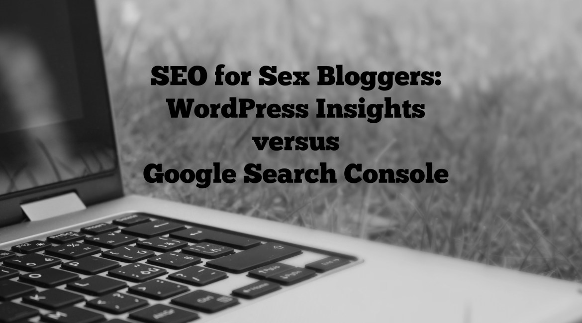 SEO for Sex Bloggers: WordPress Insights versus Google Search Console