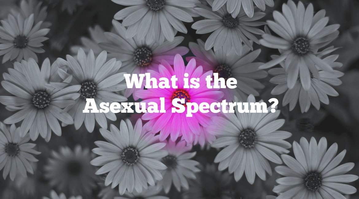 What is the Asexual Spectrum?