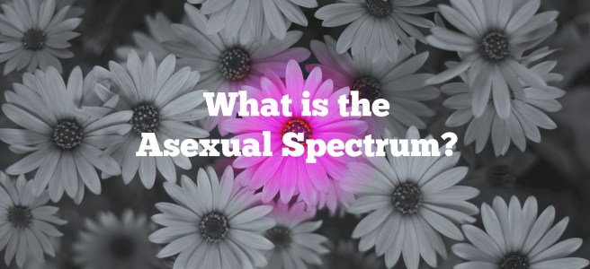 what is the asexual spectrum
