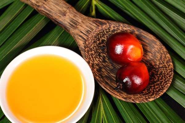 propiedades aceite de palma